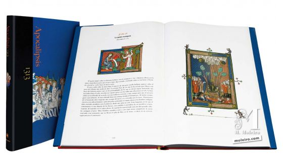 The Apocalypse of 1313 General Presentation of The Apocalypse of 1313 formatted as a Book of Art