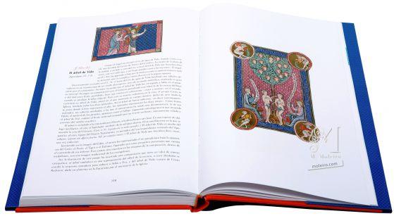 The Apocalypse of 1313 Folios 82v-83 The Tree of Life (Rev. 22: 1-5)