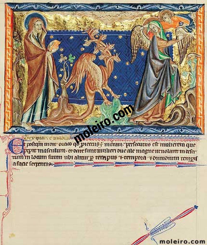 Apokalypse Gulbenkian f. 31r, Der Drachen verfolgt die Frau