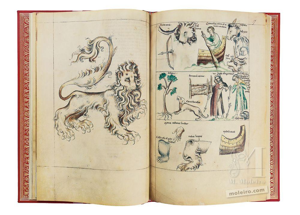 Depiction of Leo in the Albumazar Treatise (Liber astrologiae), ff. 16v-17r