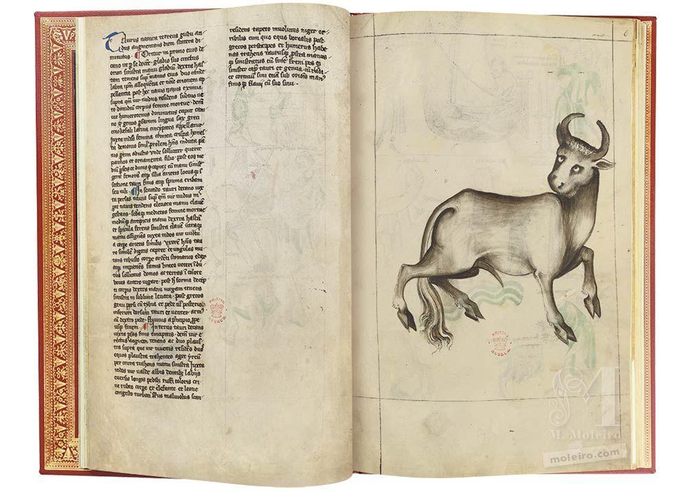 Traité d'Albumasar (Liber astrologiae) Taureau, ff. 5v-6r
