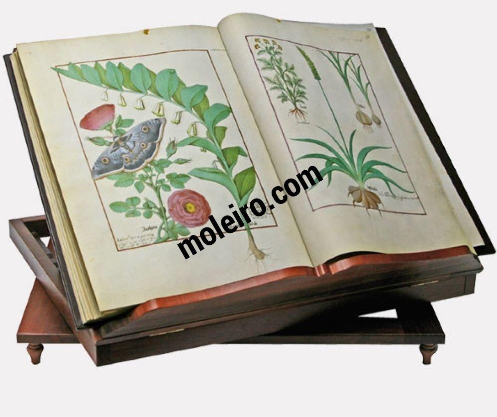 pr sentoir tournant en bois avec le livre des simples m decines. Black Bedroom Furniture Sets. Home Design Ideas
