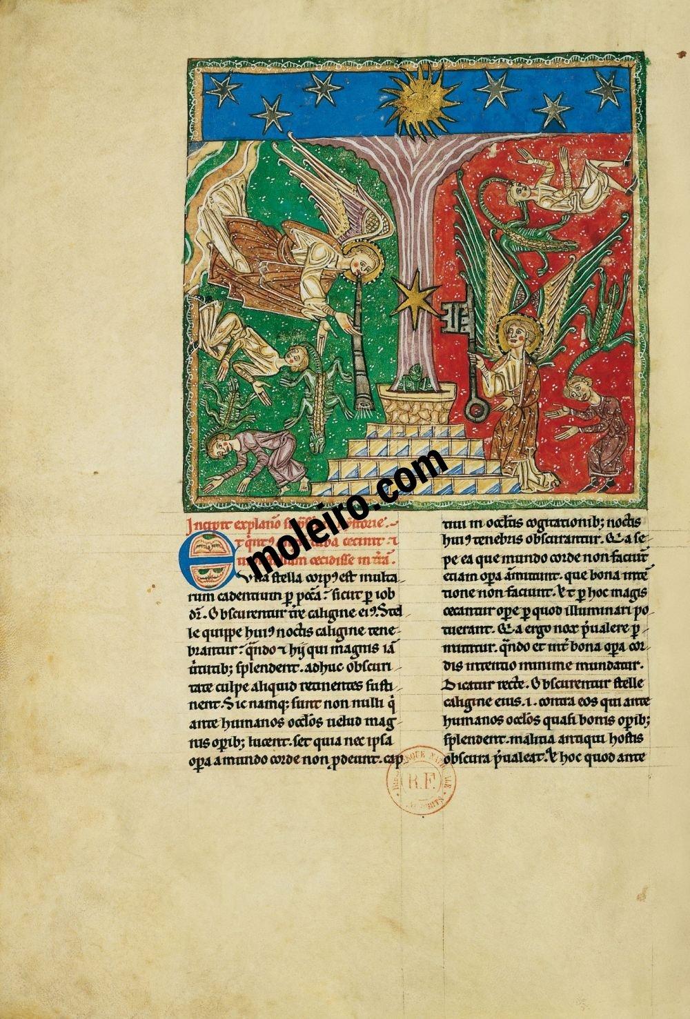 Arroyo Beatus f. 96v, The fifth trumpet judgement