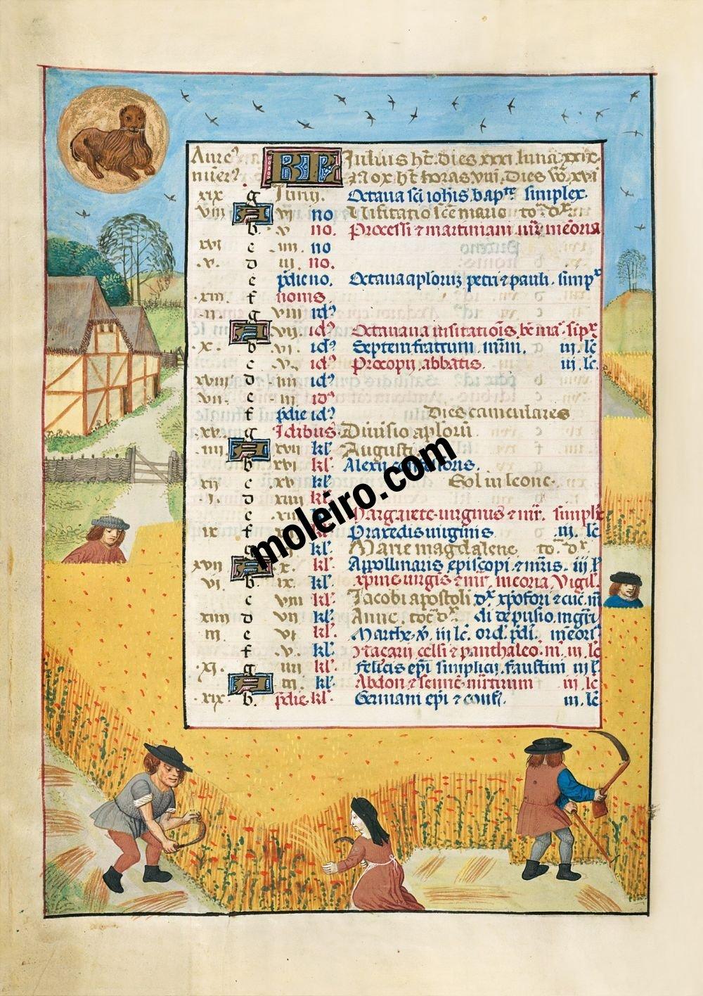 Julio en el calendario del Breviario de Isabel la Católica (última década del s. XV, Flandes) Ms. 18851, The British Library, Londres