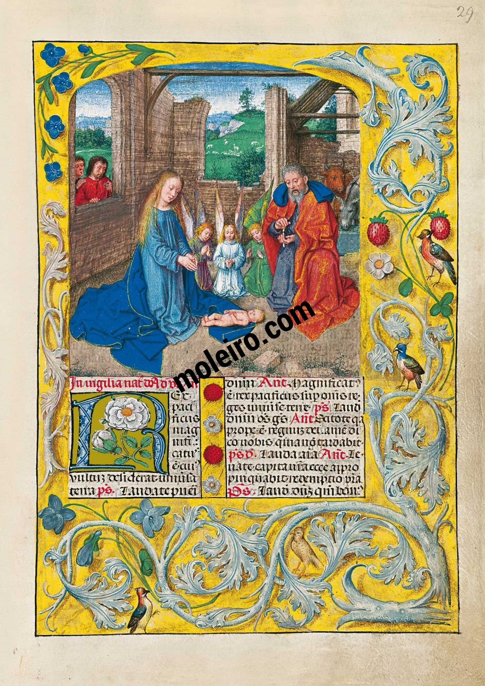 folio 29r, representación de La Natividad en el Breviario de Isabel la Católica (última década del s. XV, Flandes) Ms. 18851, The British Library, Londres