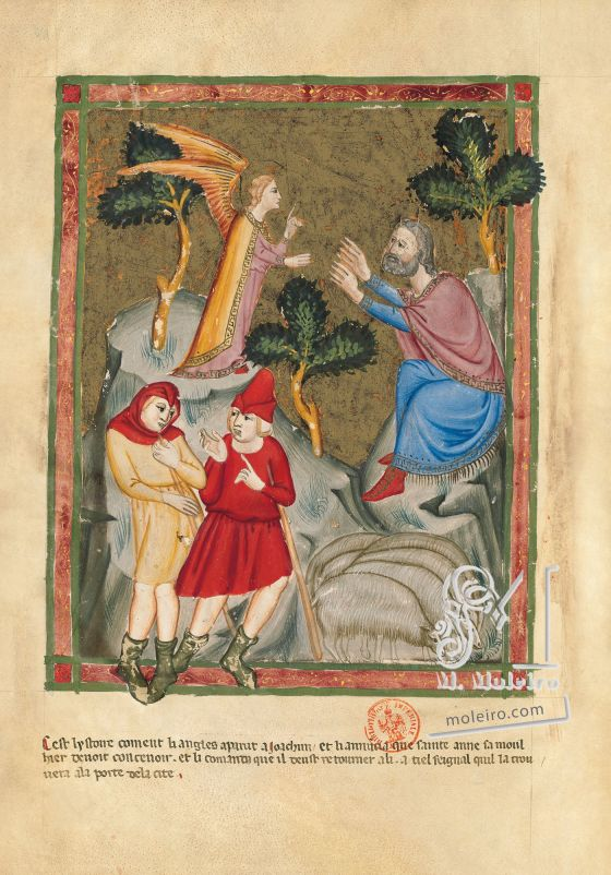 Bible moralisée of Naples f. 116v: Announcement of Mary's birth