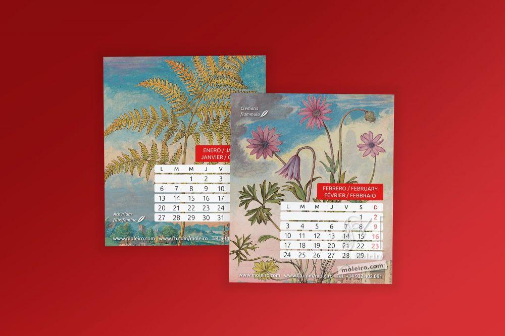 Moleiro Calendar 2020