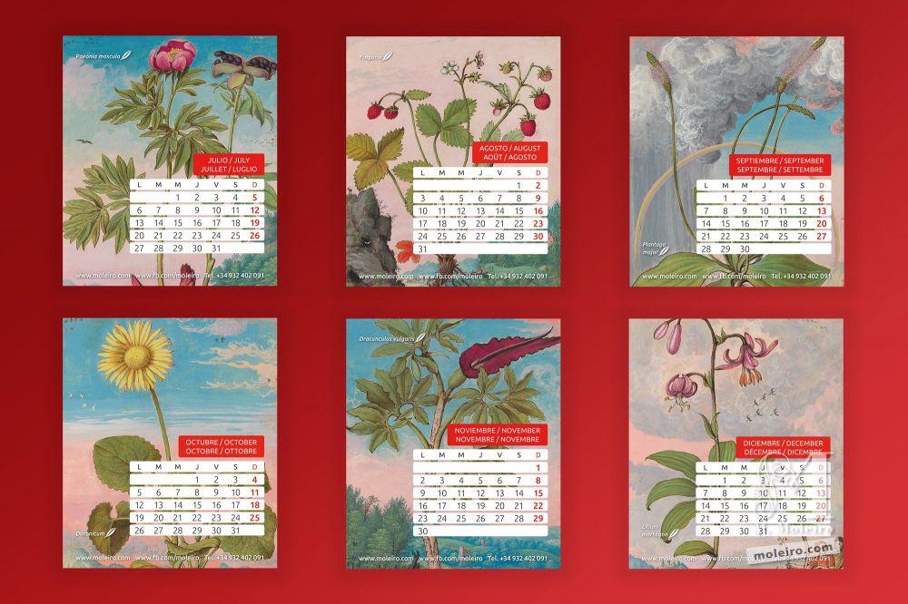 Calendario Moleiro 2020