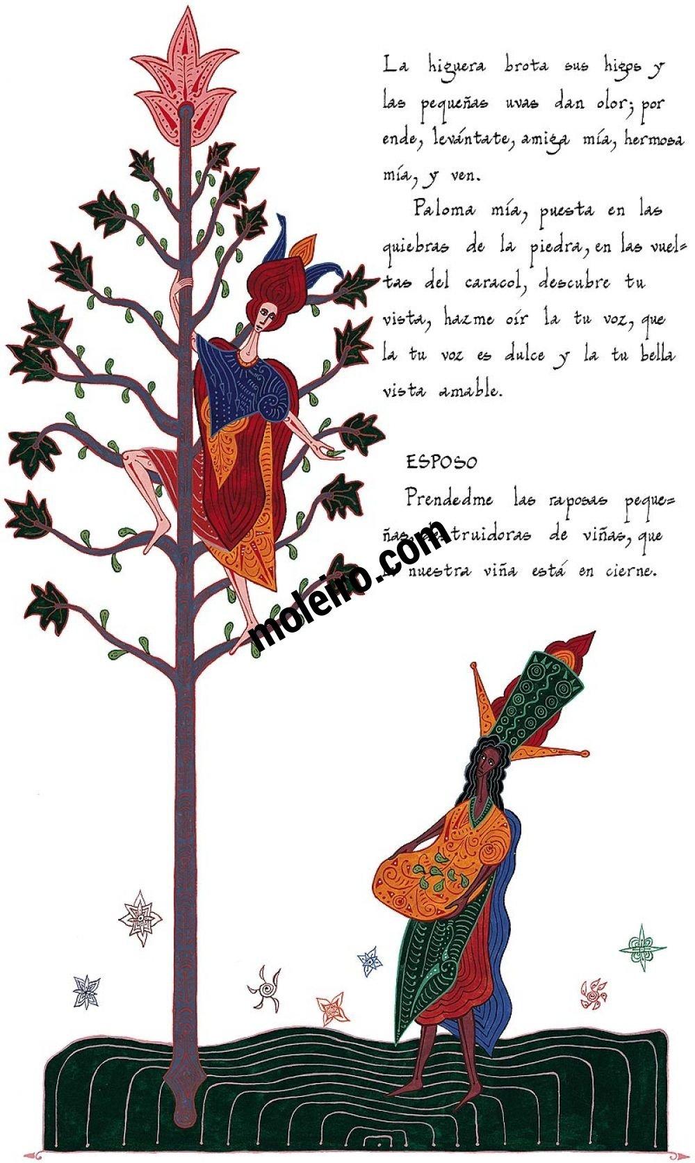 Cantar de Cantares/ Ed. de lujo (rojo)