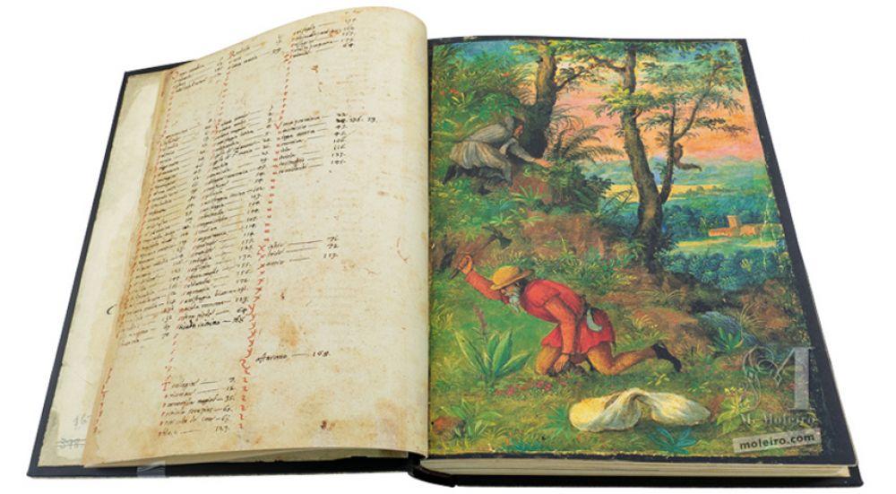 Índice del tratado de botánica Dioscórides de Cibo y Mattioli, The British Library, Add. Ms. 22332, c. 1564-1584.