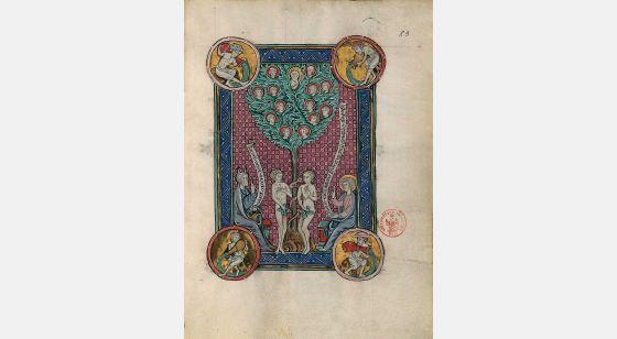 Carpeta con 5 láminas del Apocalipsis 1313 El árbol de la Vida, f. 83r