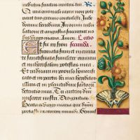 Marigold, f. 33r