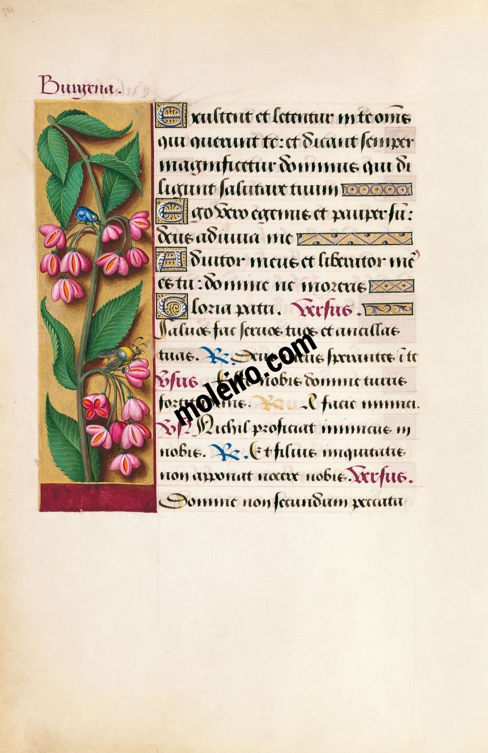 Great Hours of Anne of Brittany Spindle, f. 107v
