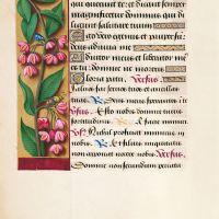 Spindle, f. 107v