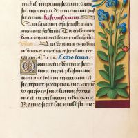 f. 127r, Fleurencelle