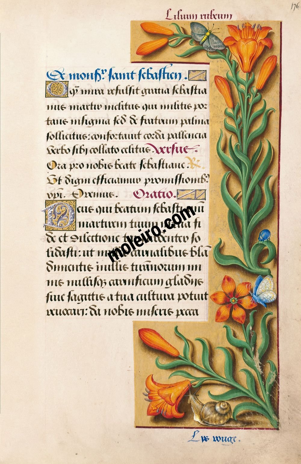 Great Hours of Anne of Brittany Orange lily, f. 176r