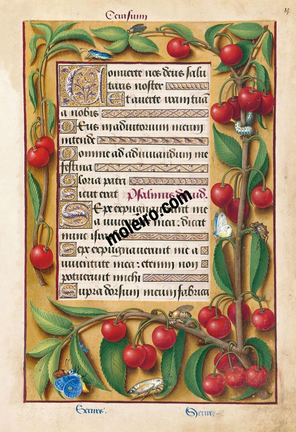 Grandes Heures d'Anne de Bretagne f. 85r, Début des complies du petit office de la Vierge