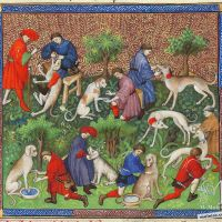 About the sicknesses of hounds and their remedies - f. 40v