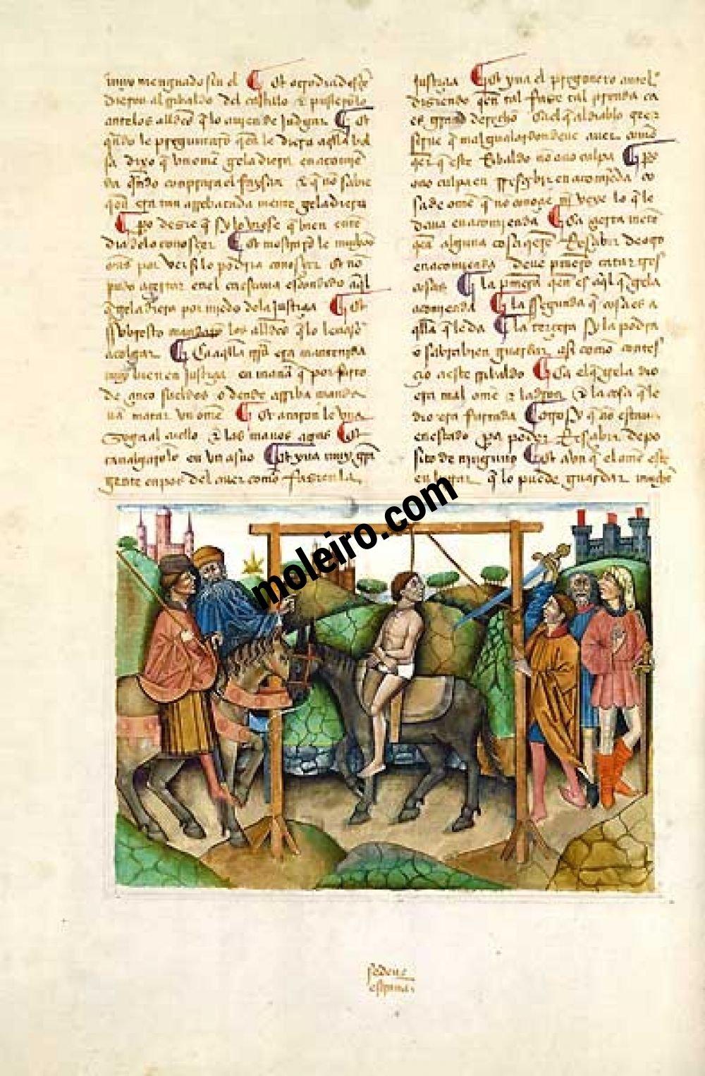 Libro del Cavaliere Zifar f.48v