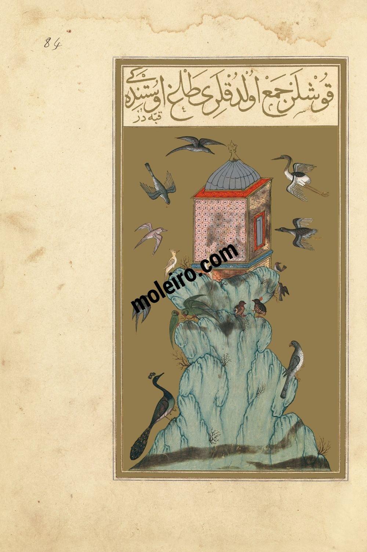 f. 84r, La montagna degli uccelli. Libro della Felicitá (Matali' al-sa'adet) Manoscritto turco ottomano del 1582, Suppl. turc 242 - Bibliothèque Nationale de France, Parigi