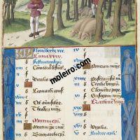 November. Thrashing for Acorns, f. 6r