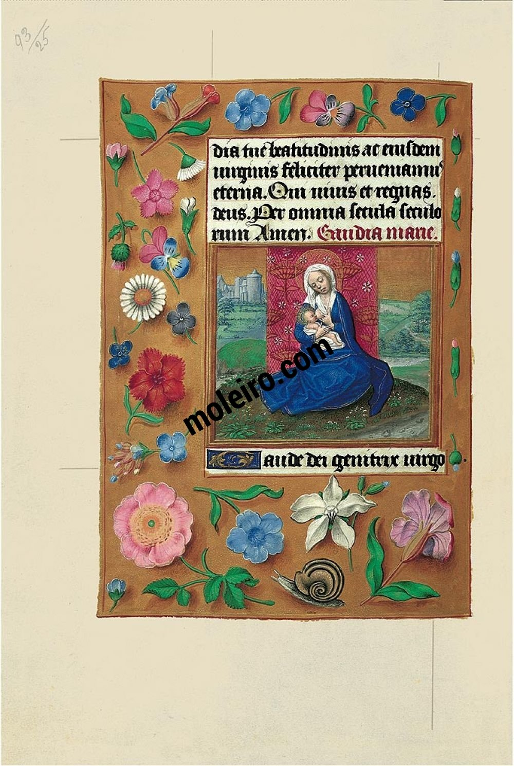 Folder of 6 prints from the Book of Hours of Joanna I of Castile (Joanna the Mad) F. 54v, the Virgin of Humility