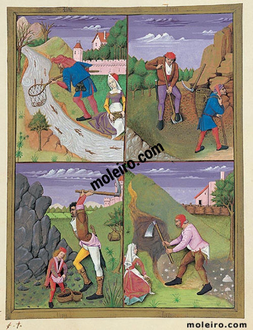 Libro de los Medicamentos Simples f. 143r