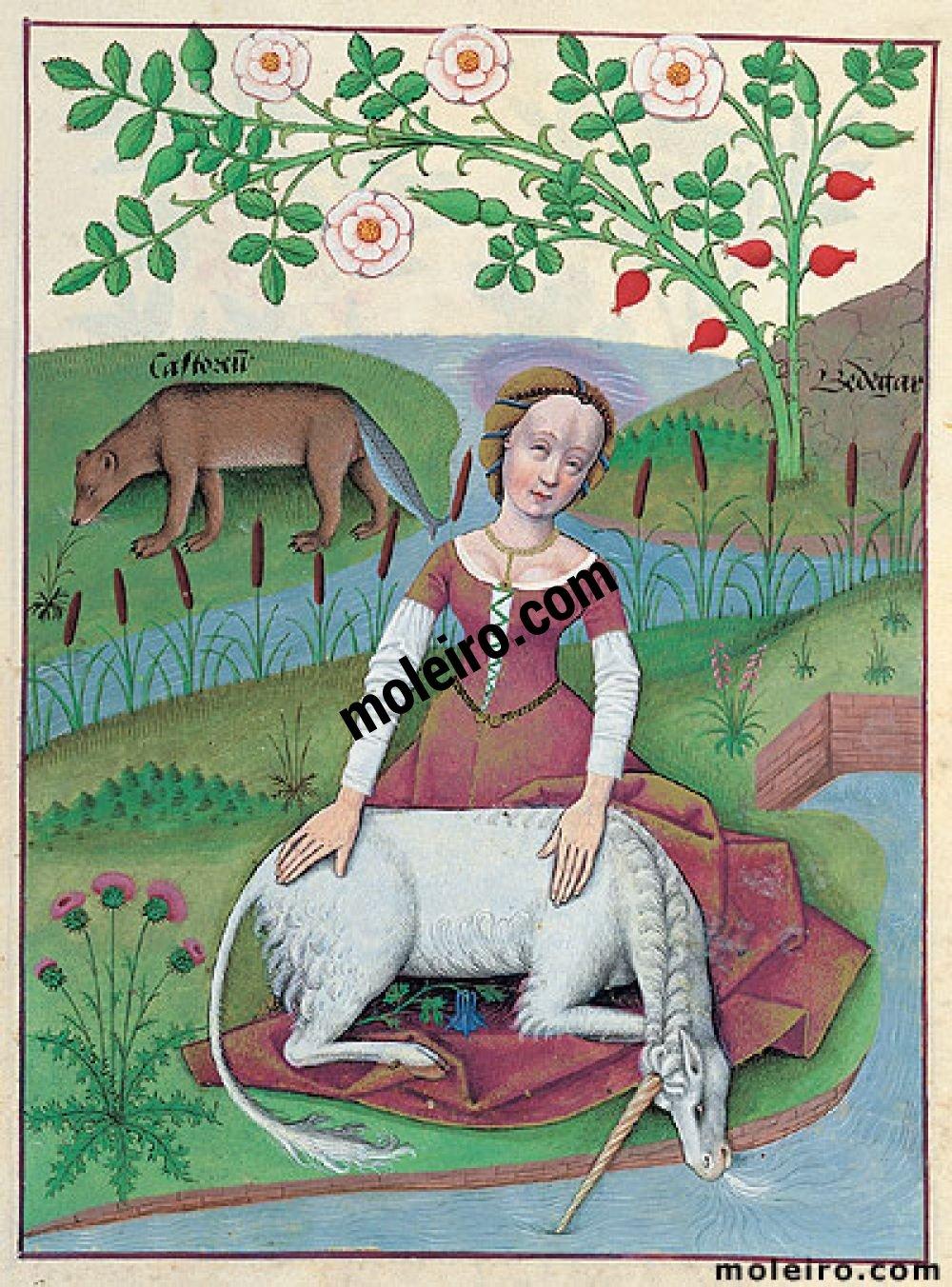 Libro de los Medicamentos Simples f. 163r, La dama y el unicornio