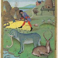 folio 168v