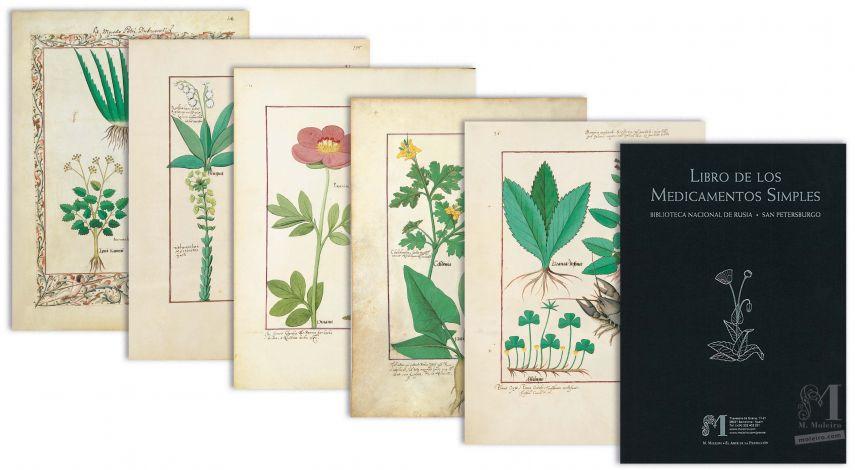 Mappe mit 5 Folios aus dem Buch der Einfachen Heilmittel (15. Jahrhundert)  5 Faksimiledrucke o 5 originalgetreue Nachbildungen