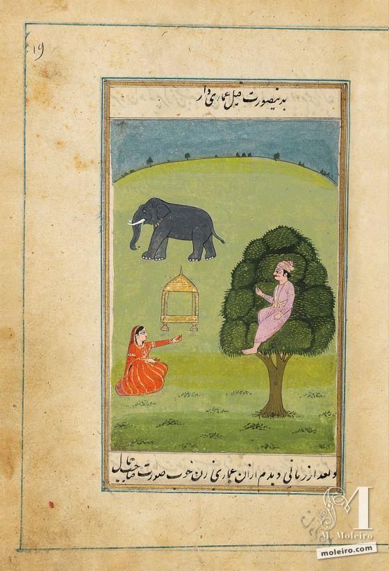 Lazzat al-nisâ (Il piacere delle donne)  Elefante con howdah – f. 19r