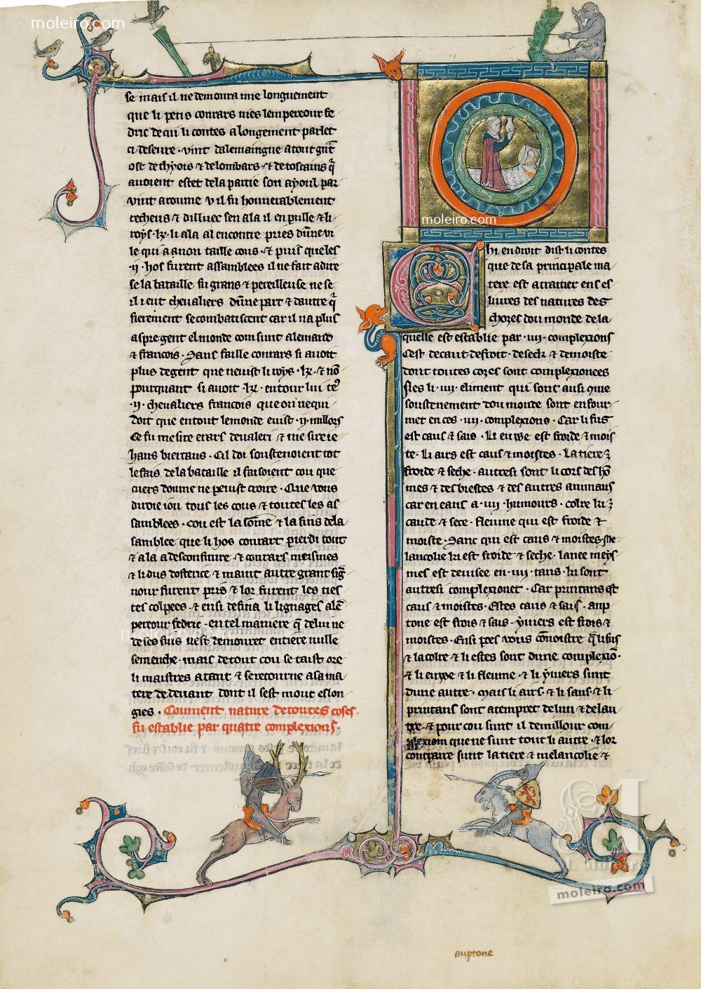 Libro del Tesoro Come tutte le cose hanno avuto origine dalla mescolanza di caratteri fisici. f. 28v