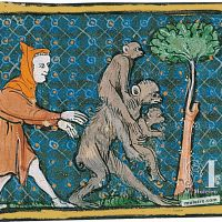 f. 59r, Dos macacos