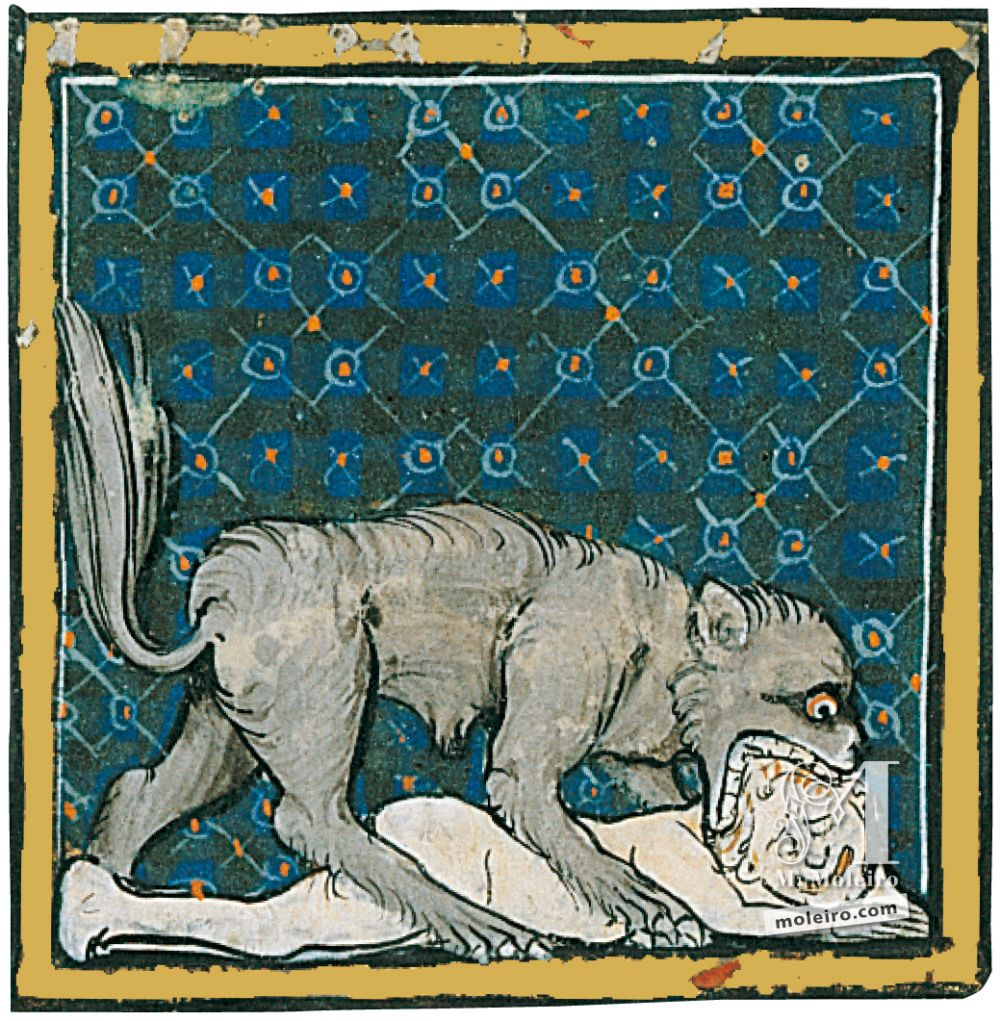 Book of Treasures f. 58r, The dogs
