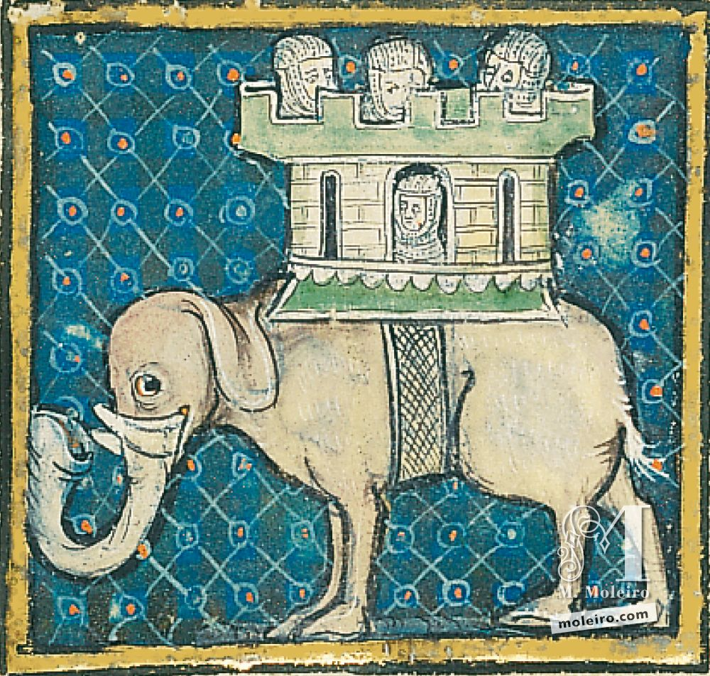 Book of Treasures f. 57r, The elephants