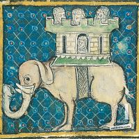 f. 57r, Del elefante