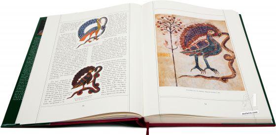 Beato de Liébana - Manuscritos Iluminados  Comparación de diferentes imágenes de la extraña ave y la serpiente