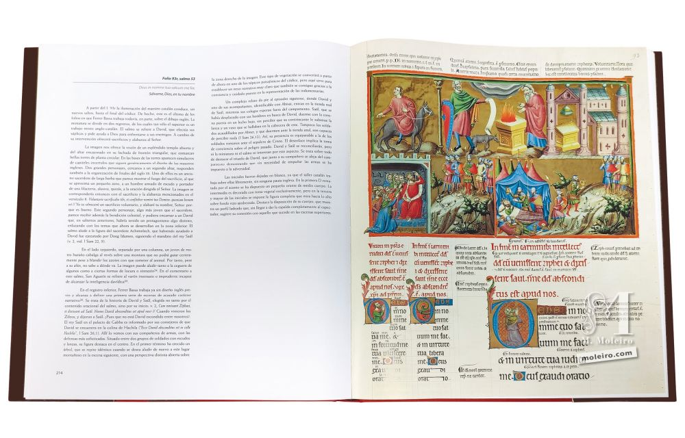 Photo of the pages 214-215 of the Anglo-Catalan Psalter, with a view of a splendid, open temple.