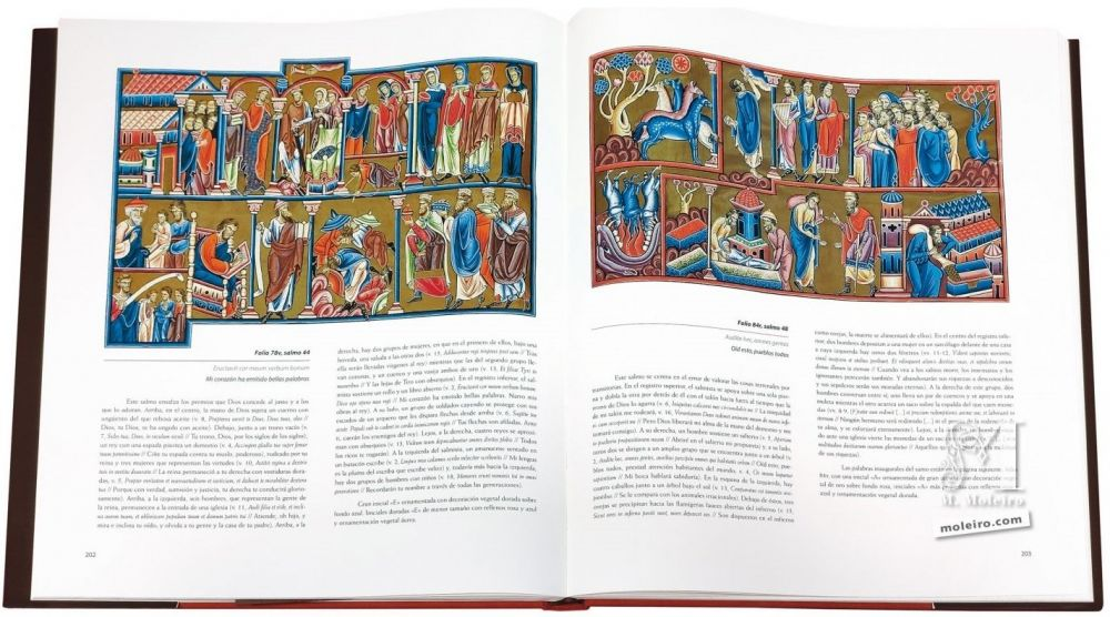 Anglo-Catalan Psalter