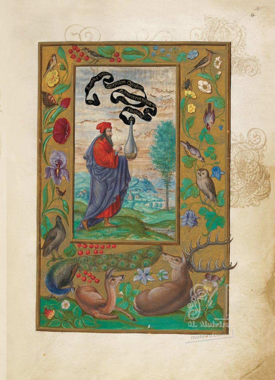 Splendor Solis Alchemical Philosopher, f. 4r