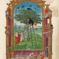 Philosophical Tree, f. 15r