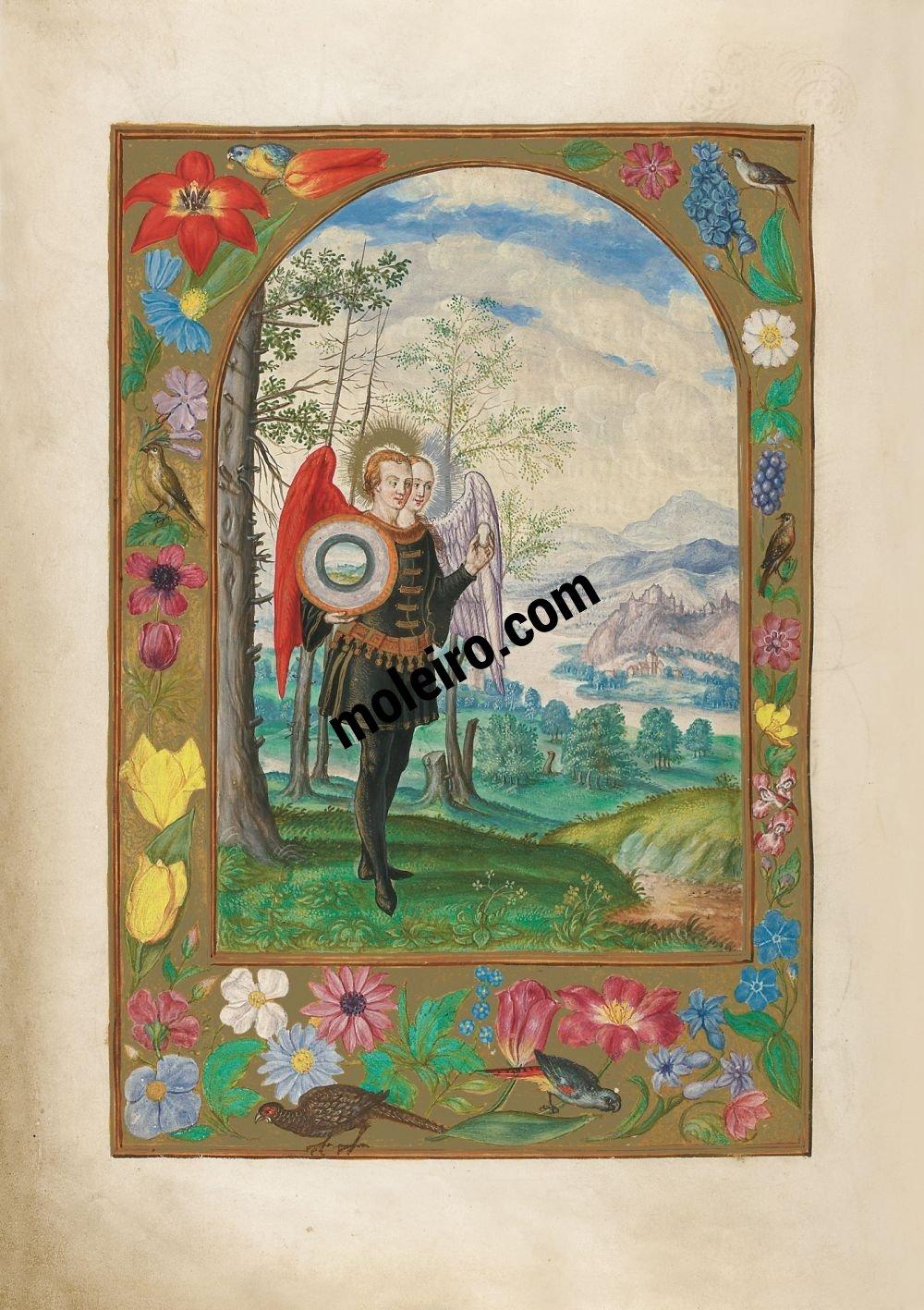Splendor Solis f. 19v, Hermafrodita