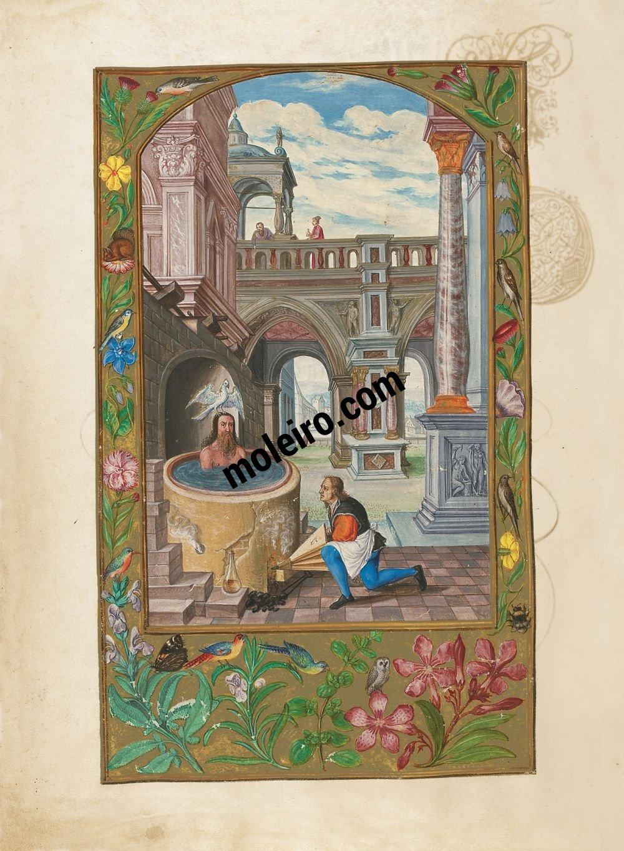 Splendor Solis f. 21v, Kochung (Tafel 11)