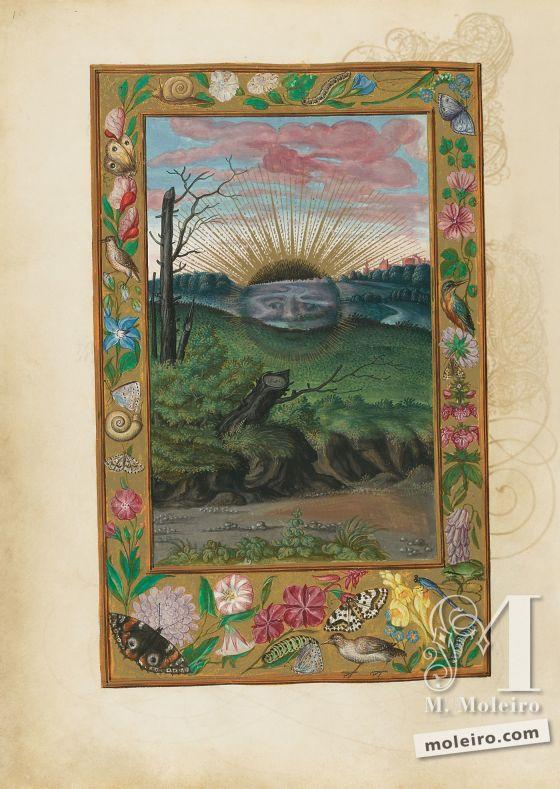 Splendor Solis Black Sun, f. 30v