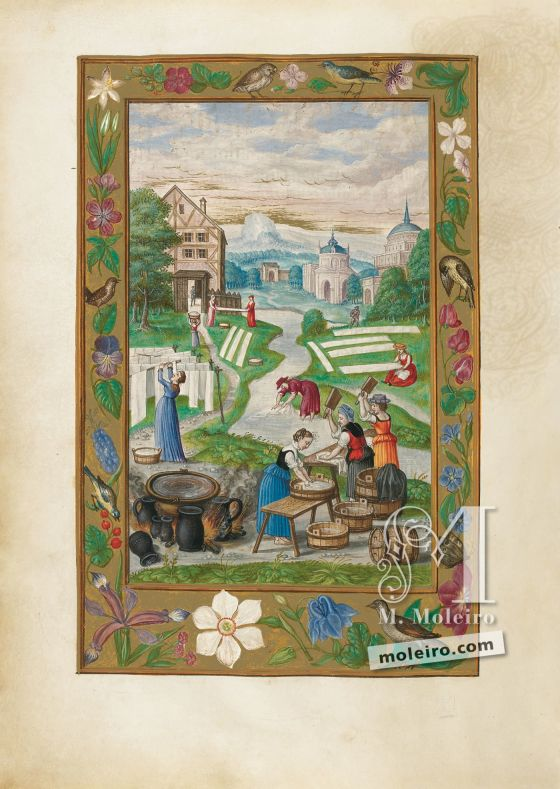 Splendor Solis f. 32v, Labor de Mujeres