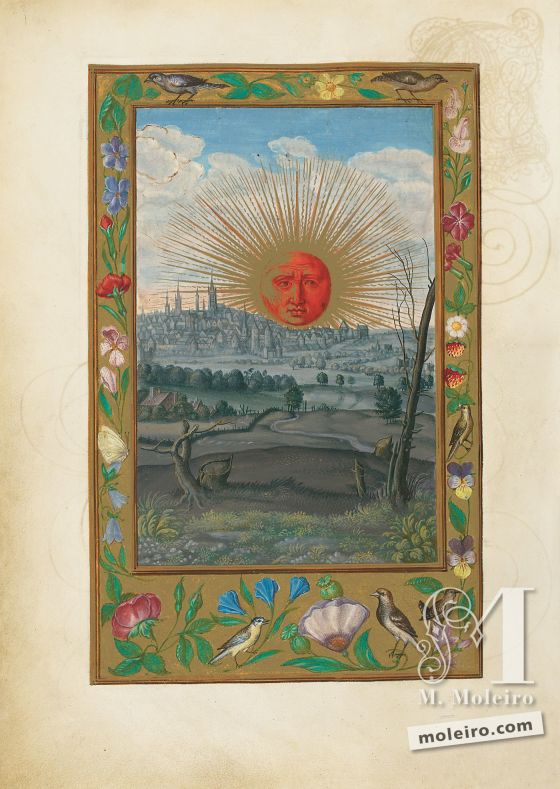 Splendor Solis f. 33v
