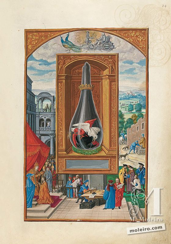 Splendor Solis f. 24r, Jupiter (Tafel 13)