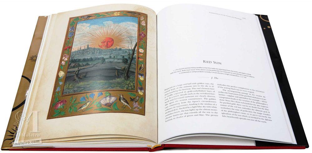 Sol rojo en el tratado alquímico, Splendor Solis, Harley Ms. 3469 (1582, Alemania) de la British Library