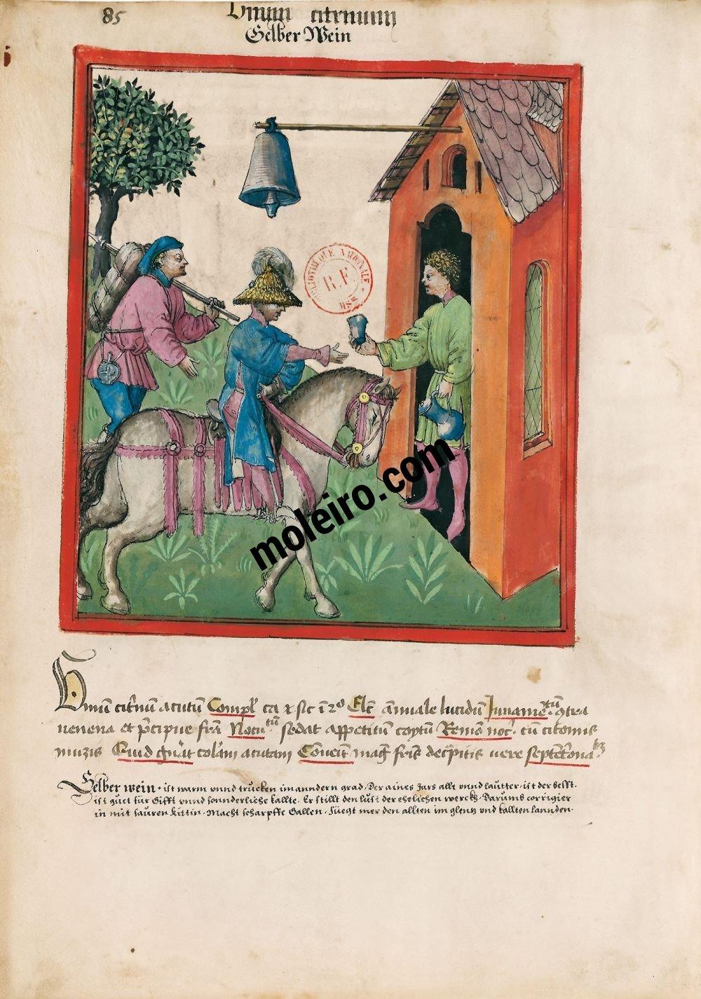 f. 85v, Vino verde en el Tacuinum Sanitatis - Ms. Lat 9333  (XV, Renania) Bibliothèque nationale de France, París tratado medicina edad media