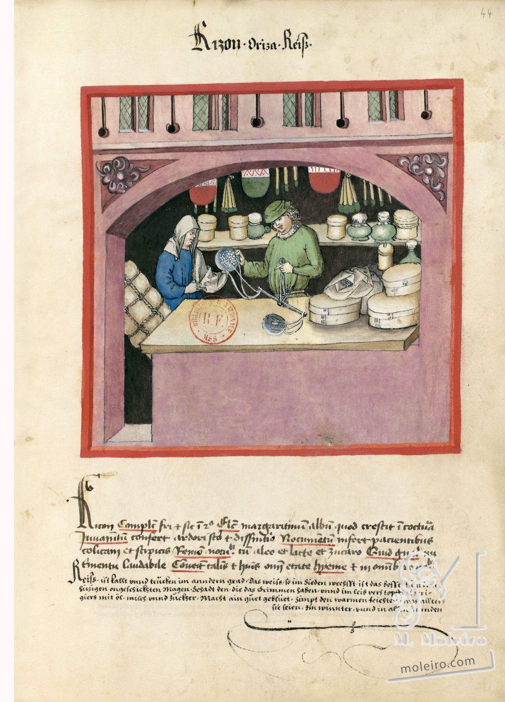 f. 44r, Arroz en el Tacuinum Sanitatis - Ms. Lat 9333  (XV, Renania) Bibliothèque nationale de France, París tratado medicina edad media